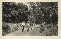 nil (women walking on a road)