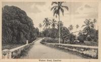 Walezo Road. Zanzibar