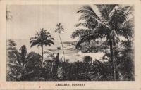 Zanzibar Scenery
