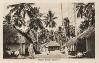 Native Street, Zanzibar
