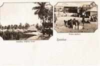 Zanzibar native huts + Water carriers