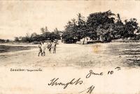 Zanzibar, Negerviertel