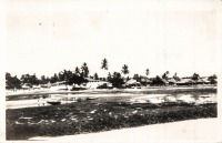 nil (Zanzibar, the Creek, low tide)
