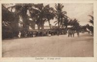 Zanzibar - A large street