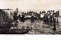 Pulling in hippo, Victoria Nyanza