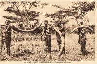 AFRIQUE ORIENTALE - Porteurs d'Ivoire