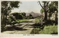 Mount Kenya FT. 17041