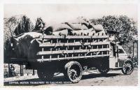 Coffee Motor Transport to Railhead - Kenya