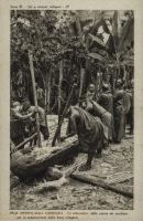La triturazione delle canna da zucchero