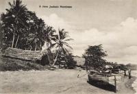 A view Juakale Mombasa