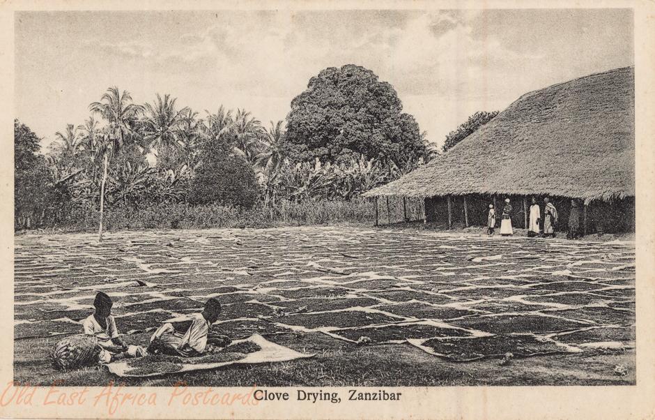 Clove Drying, Zanzibar