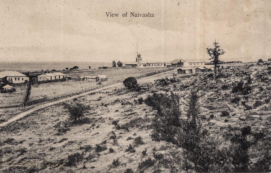 View of Naivasha