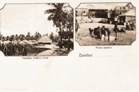 Zanzibar native huts + Water carriers
