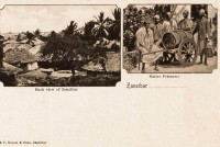 Back view of Zanzibar + Native prisoners