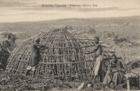 Entebbe, Uganda - Framing Native Hut