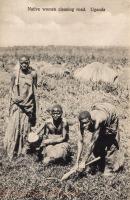 Native women cleaning road. Uganda