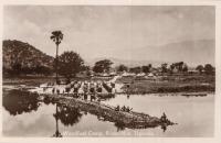 Woodfuel Camp, River Nile, Uganda