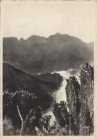 Rwenzori - The Black Lake