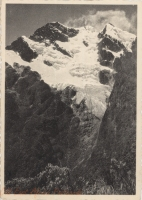 Rwenzori - Glacier Alexandra