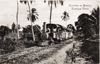 Zanzibar to Bububu Railroad train