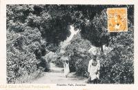 Shamba Path