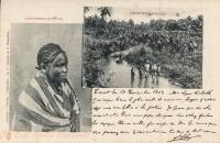 Native + Zanzibar Maure