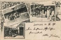 Wasser schopfende Negerinnen + Früchte tragende Neger + Sultansoldaten
